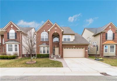 Novi Single Family Home For Sale: 27586 Cromwell Road