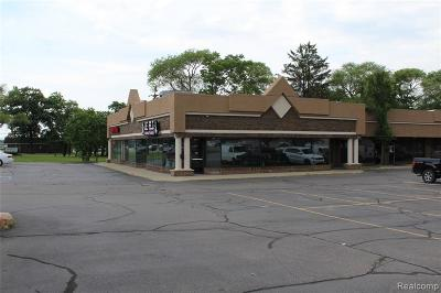 Macomb County Commercial For Sale: 49662 Van Dyke Avenue