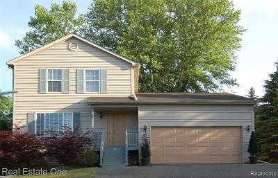 Commerce Twp Single Family Home For Sale: 1291 Sleeth Road
