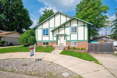 Fraser Single Family Home For Sale: 31389 Grove Street