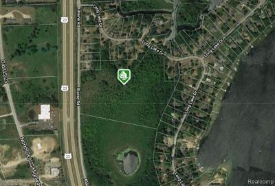 Hartland Twp Residential Lots & Land For Sale: Blaine Road