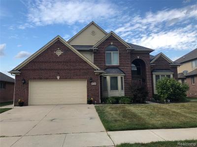 Macomb Twp Single Family Home For Sale: 21745 Sandra Theresa Drive W