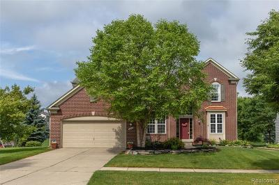 Holly Twp Single Family Home For Sale: 255 Valley Stream Drive