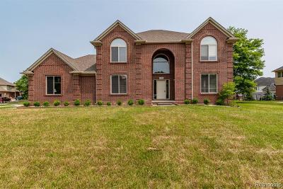 Troy Single Family Home For Sale: 6916 Dakota Drive