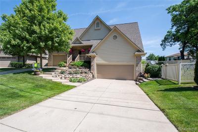 White Lake Single Family Home For Sale: 9008 Pontiac Lake Road