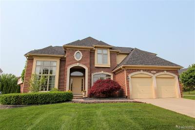 Novi Single Family Home For Sale: 24477 Thatcher Drive