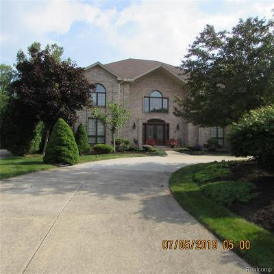 Grosse Ile Twp Single Family Home For Sale: 8657 Marquette