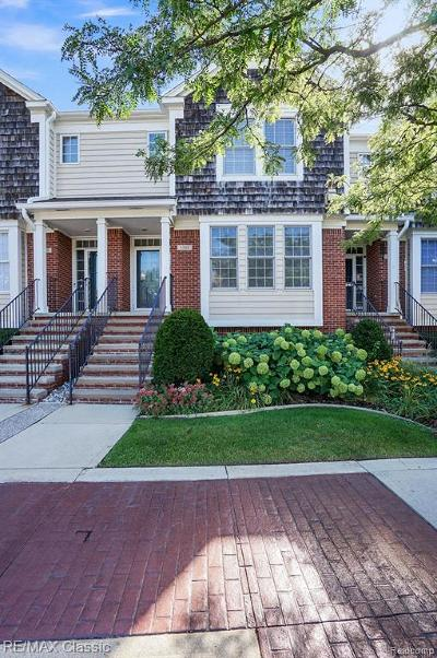 Royal Oak Condo/Townhouse For Sale: 1105 S Main Street