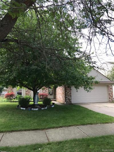 Macomb Twp Single Family Home For Sale: 45375 Ronnen Drive