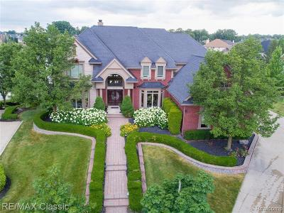 Northville Single Family Home For Sale: 18155 Peninsula Way