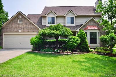 Farmington, Farmington Hills Single Family Home For Sale: 25651 Pebble Court