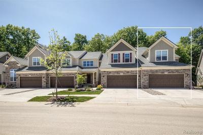Ann Arbor Condo/Townhouse For Sale: 3206 Brackley Drive #90