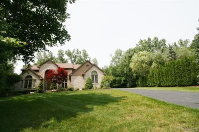 Farmington Hills Single Family Home For Sale: 31565 W Stonewood Court