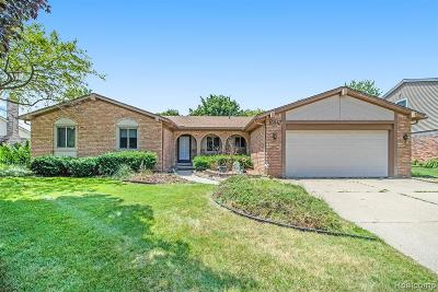 Northville Single Family Home For Sale: 16847 Dunswood Road