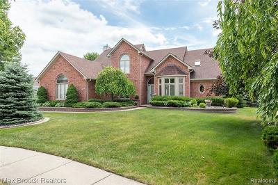 Sterling Heights Single Family Home For Sale: 43674 Vintage Oaks Drive