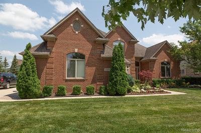 Macomb Twp Single Family Home For Sale: 51304 Shadywood Drive