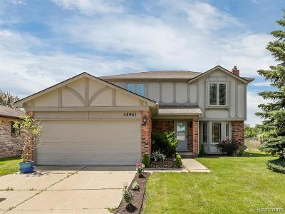 Sterling Heights Single Family Home For Sale: 38967 Harrison Drive