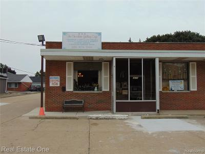 Macomb County Commercial For Sale: 3672 Chicago Road