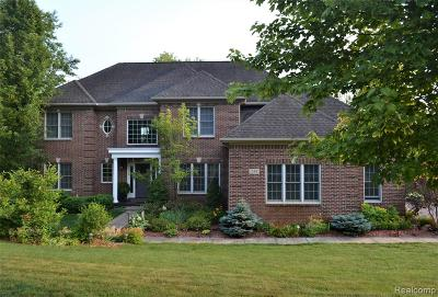 Oxford Single Family Home For Sale: 244 Fairway View Drive