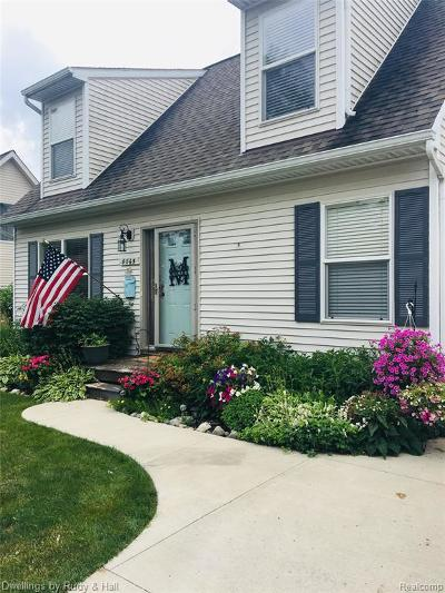 Salem Twp MI Single Family Home For Sale: $210,000