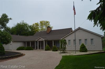 Canton, Plymouth Single Family Home For Sale: 48975 N Territorial Road