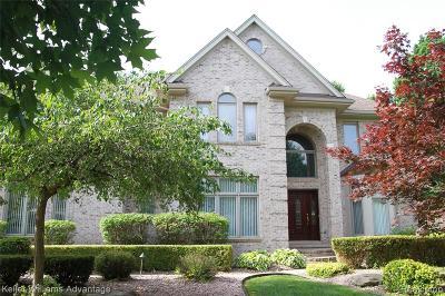 Northville Single Family Home For Sale: 16680 Brooklane Boulevard
