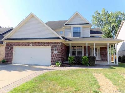 Brownstown Twp Single Family Home For Sale: 23569 Mabel Court