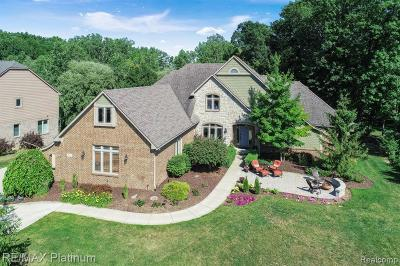 Single Family Home For Sale: 8605 Stoney Creek Drive