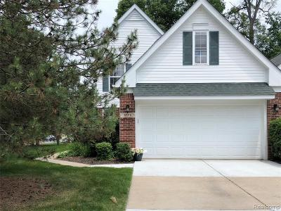 Wixom Condo/Townhouse For Sale: 671 Shady Maple Drive