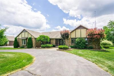Genesee County Single Family Home For Sale: 7480 Baldwin Road