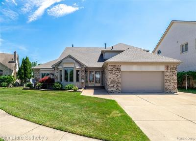 Shelby Twp Single Family Home For Sale: 51366 Sandshores Drive