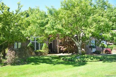 Grosse Ile Twp Single Family Home For Sale: 8963 Marquette Drive