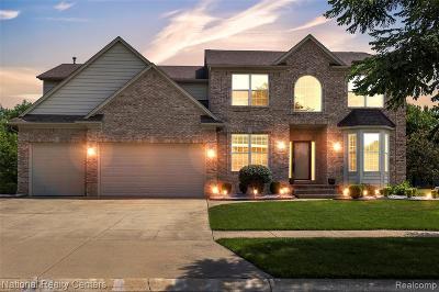 Troy Single Family Home For Sale: 4786 Douglas Fir Drive