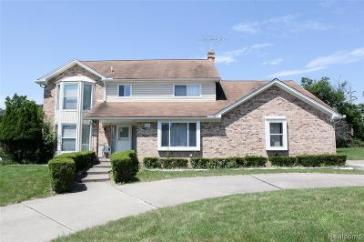 Rochester Hills Single Family Home For Sale: 1594 Northumberland Drive