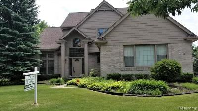 Novi Single Family Home For Sale: 40583 Kingsley Lane