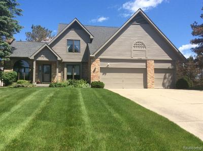 Single Family Home For Sale: 1238 Lake Valley Drive