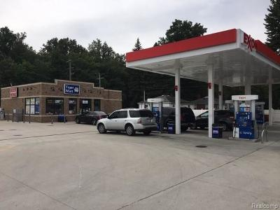 Taylor MI Commercial For Sale: $1,299,999