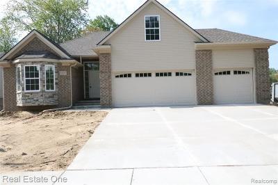 Livonia Single Family Home For Sale: 34387 Ann Arbor Trail