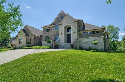Macomb County, Oakland County, Wayne County Single Family Home For Sale: 950 Knob Creek Drive