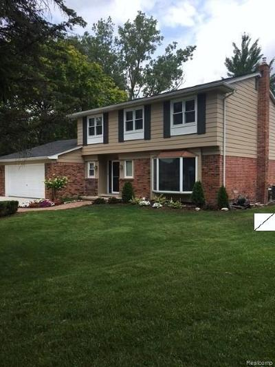 Lake Orion, Orion Twp, Orion Single Family Home For Sale: 2707 Wareing Drive