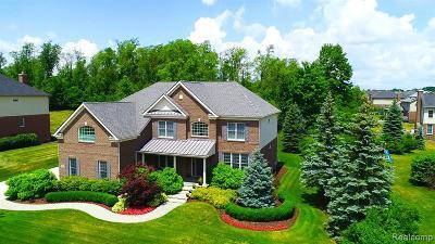 Northville Single Family Home For Sale: 50286 Briar Ridge Lane