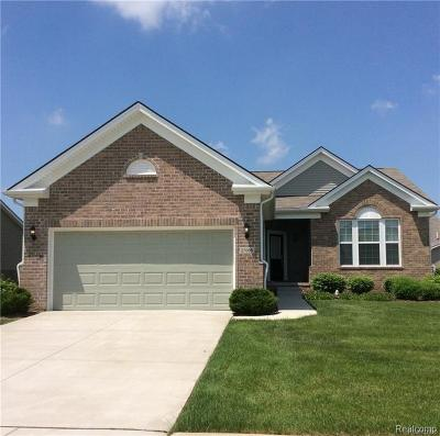 Brownstown Twp MI Condo/Townhouse For Sale: $285,000