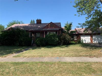Southgate Single Family Home For Sale: 13666 Helen Street