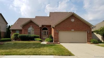Macomb Twp Single Family Home For Sale: 21505 Sabrina Drive