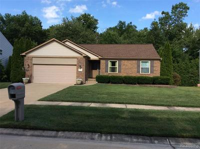 Romulus Single Family Home For Sale: 8157 Center Drive