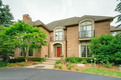 West Bloomfield Twp Single Family Home For Sale: 6574 Crest Top Drive
