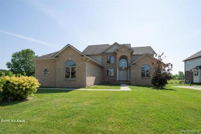 Single Family Home For Sale: 32659 Adam Brown Drive