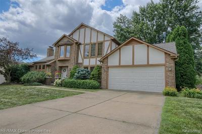 Livonia Single Family Home For Sale: 15043 Woodside Drive Drive