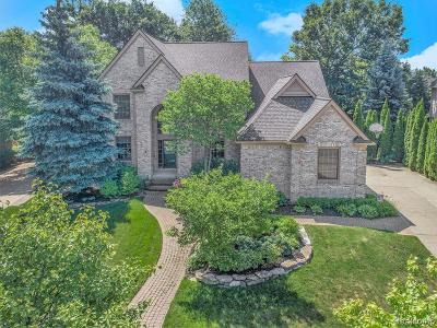 West Bloomfield Twp Single Family Home For Sale: 6221 Branford Drive
