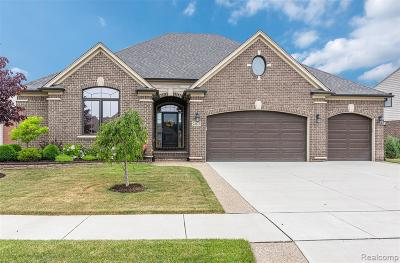 Macomb Twp Single Family Home For Sale: 22672 Timbercrest Drive